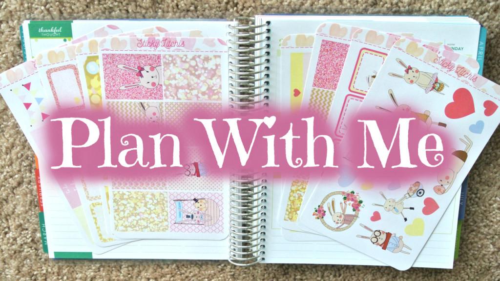 Mock Plan With Me - StickyLitchie (Now PinkBlushingDasies)